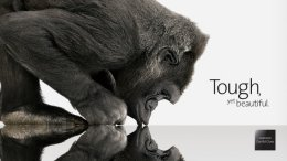 В чем секрет Gorilla Glass