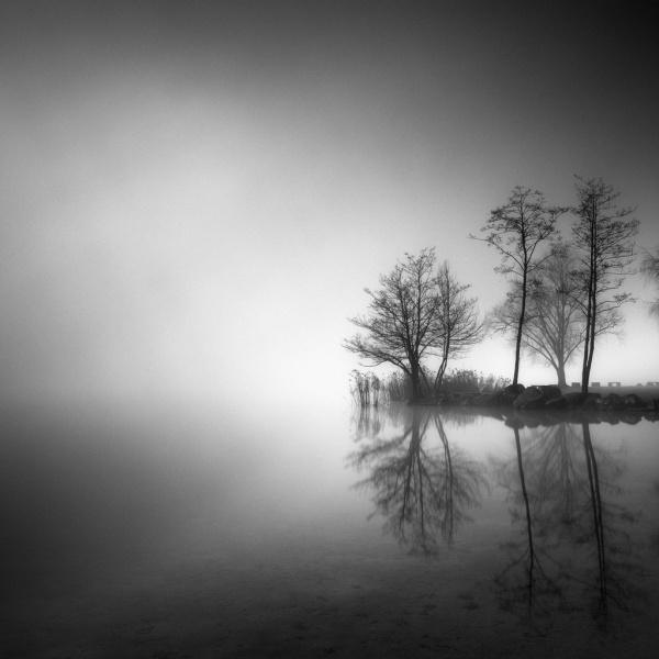 Гений простых пейзажей: фотографии мастера из Швейцарии (ФОТО)