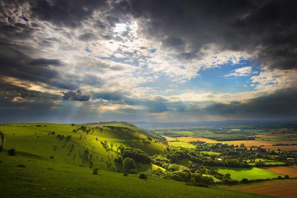 Живая природа глазами британского фотографа (ФОТО)