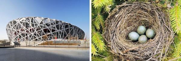 Архитектурные шедевры, вдохновленные самой природой (ФОТО)
