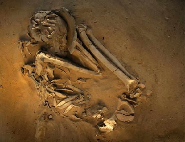 Пустыня смерти. Какие секреты таит в себе Сахара (ФОТО)