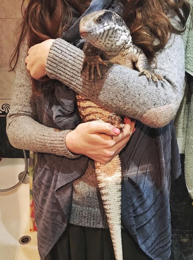 Мануэль – варан, который доказал, что рептилии тоже могут быть милыми домашними животными (ФОТО)