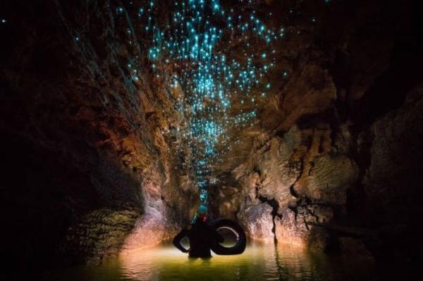 Находка для туриста: поразительные пещеры Вайтомо в Новой Зеландии (ФОТО)