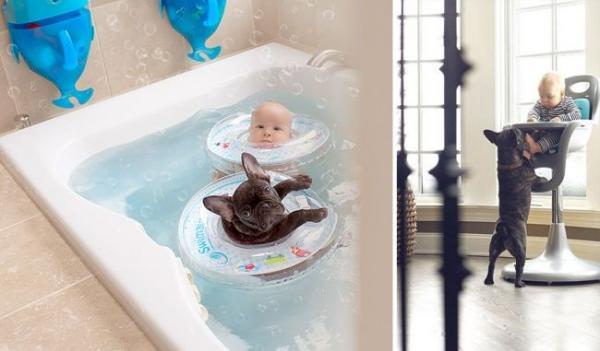 Малыш и щенок стали звездами Интернета (ФОТО)