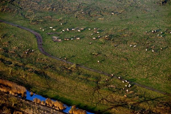 Неимоверная красота: Нидерланды с высоты птичьего полета (ФОТО)