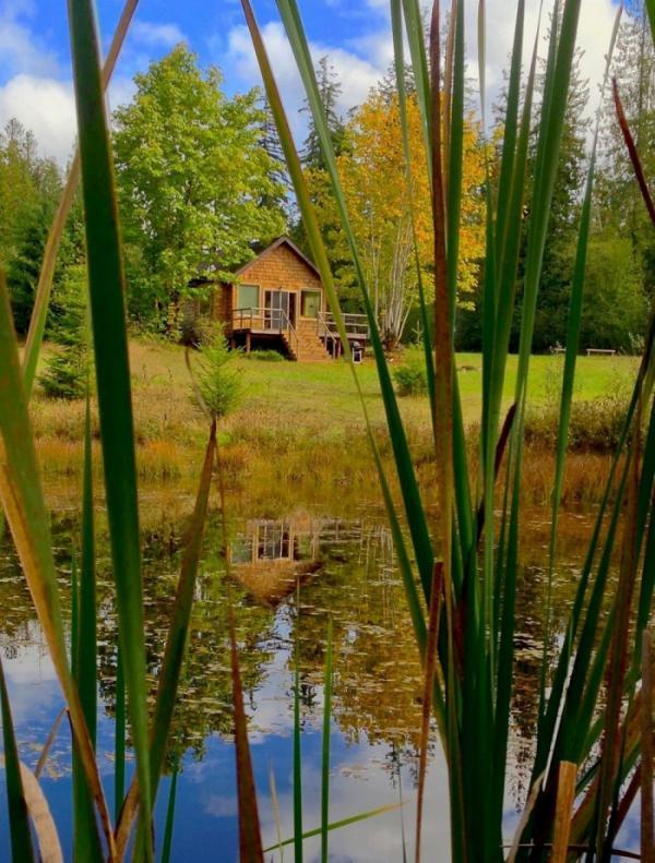 Один на один с природой: симпатичный лесной коттедж в США (ФОТО)