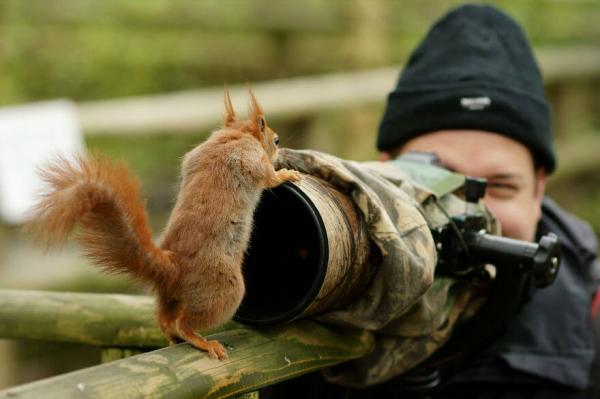 15 доказательств того, что фотограф дикой природы — лучшая профессия в мире