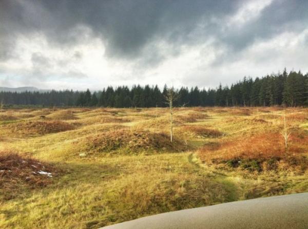 Странные холмы на территории американского штата Вашингтон (ФОТО)