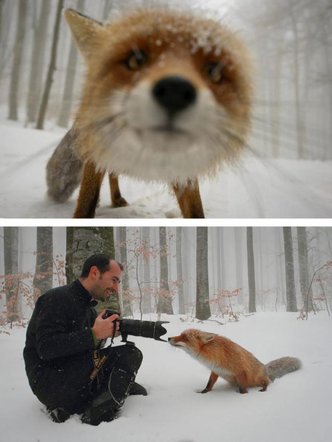 Вся правда о том, как создаются красивые снимки (ФОТО)