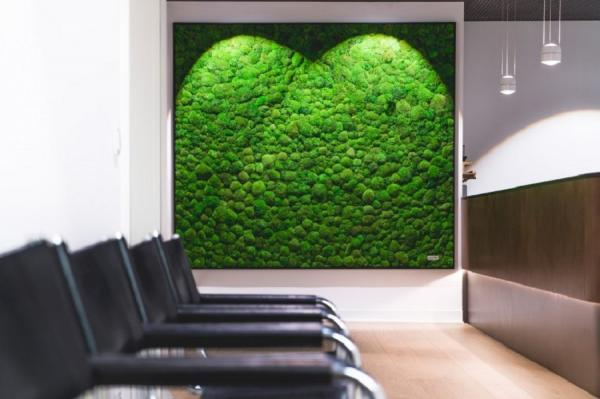 Вертикальные сады — зеленые оазисы крупных городов (ФОТО)