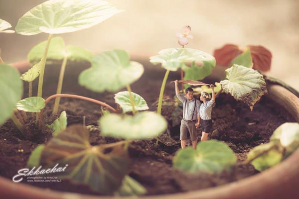 Сюрреализм свадебных снимков: необычные работы Еккачай Саелоу (ФОТО)