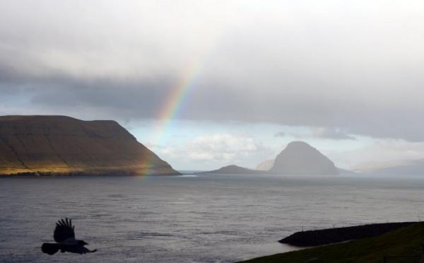 На Фарерских островах провели самый своеобразный музыкальный фестиваль в Европе (ФОТО)