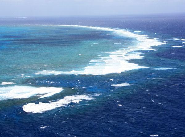 Самый большой коралловый риф в мире (ФОТО)