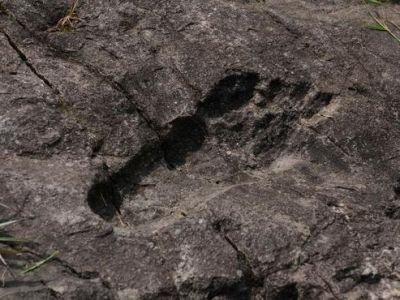 В Китае обнаружили огромные окаменелые следы человека (ФОТО)