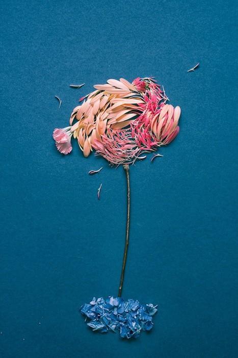 Необычное хобби: картины из лепестков цветов (ФОТО)