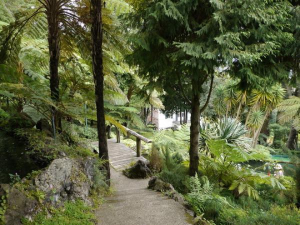 Красота по-европейски: потрясающие сады Дворца Монте в Португалии (ФОТО)