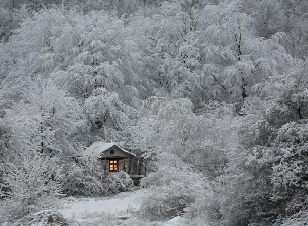 Тишина и покой: десять примеров уединенных домиков (ФОТО)