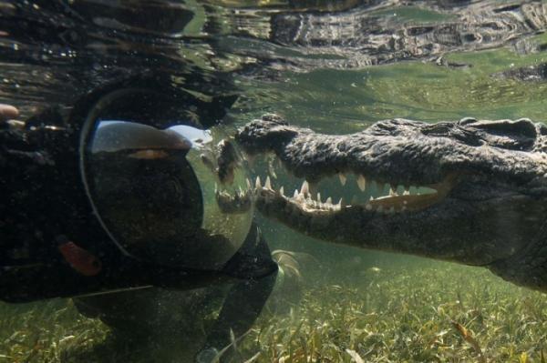 В поисках острых ощущений: по-настоящему экстремальное увлечение фотографа из Мексики (ФОТО)