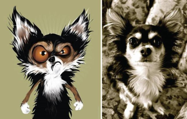 Роскошные портреты домашних животных с учетом особенностей их характера (ФОТО)
