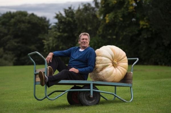 Овощи-монстры на выставке цветов в Великобритании (ФОТО)