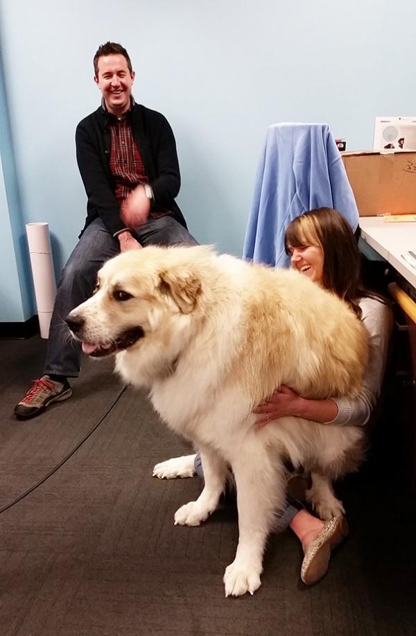 Дружба не по росту: собаки и их хозяева (ФОТО)