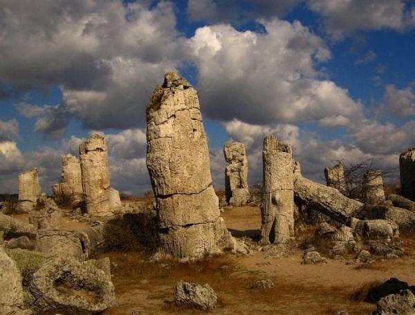 Удивительная работа природы: каменный лес в Болгарии (ФОТО)