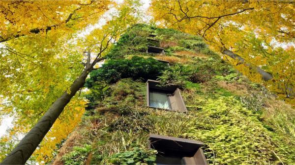 Инновационное эко-жилье: дома-деревья в Нидерландах (ФОТО)