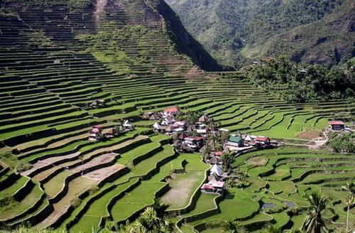 Восьмое чудо света: рисовые террасы Банауэ (ФОТО)