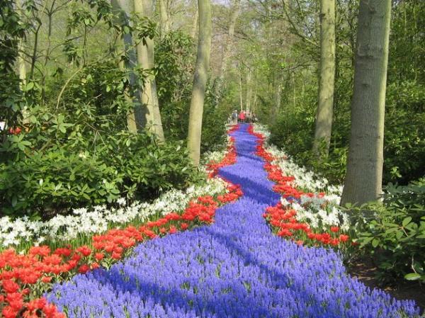 Самый большой цветочный парк в мире (ФОТО)