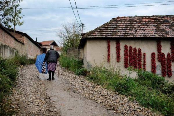 Деревня Donja Lakosnica - сербская «столица паприки» (ФОТО)