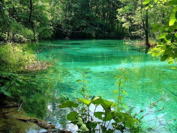 Настоящая природная сокровищница: потрясающий Национальный парк в Хорватии (ФОТО)