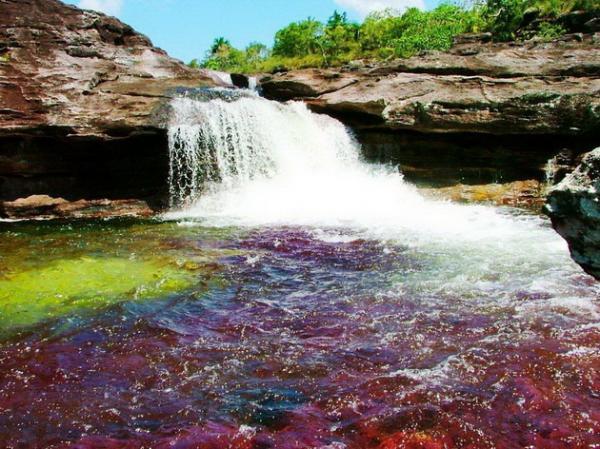 Река, убежавшая из рая: сказочный водный поток в Колумбии (ФОТО)