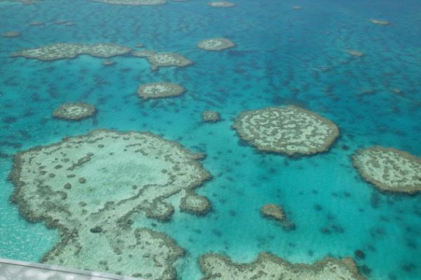 Невероятное творение природы: Большой Барьерный Риф в Австралии (ФОТО)