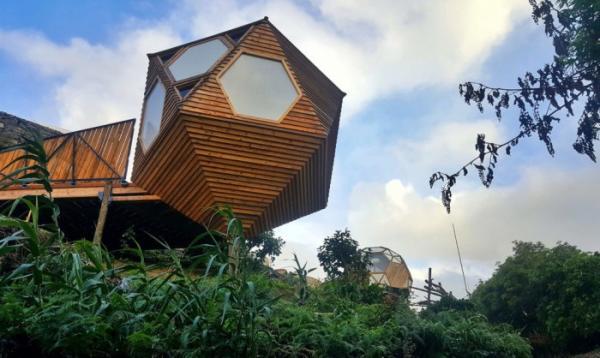 Деревянные эко-домики: отличное решение для любителей агротуризма  (ФОТО)