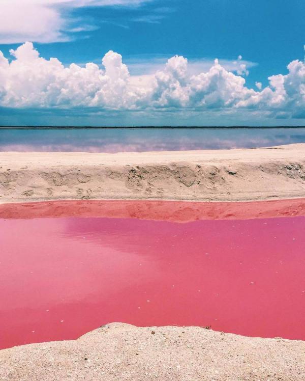 Розовый рай: сказочная лагуна мексиканского побережья (ФОТО)