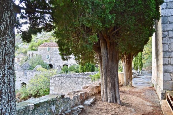Место, отвоеванное природой: деревня-призрак в Хорватии  (ФОТО)
