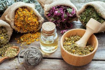 Зелень против гриппа: какие растения помогают выздороветь