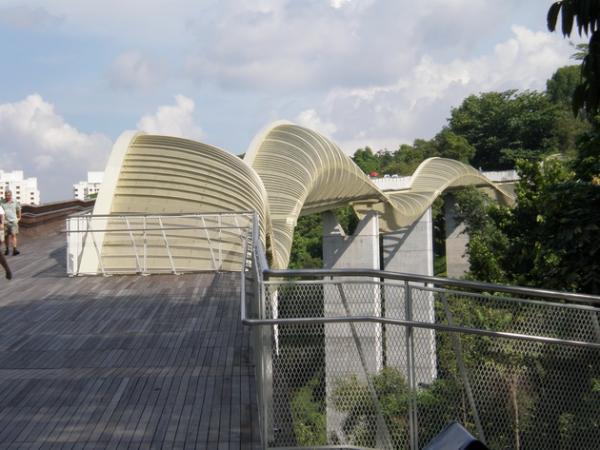 Мост, соединяющий живописные парки: эффектное сооружение в центре Сингапура (ФОТО)