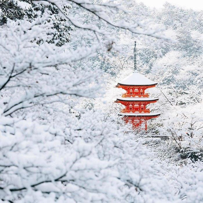 Редкое явление. Снегопад превратил Киото в страну чудес (ФОТО)