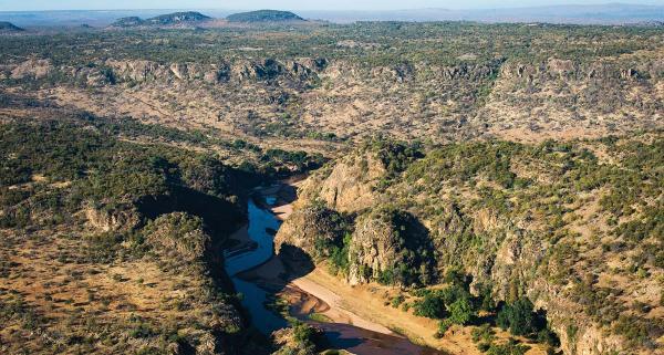 Национальный парк Крюгера в ЮАР – необъятные площади африканской природы (ФОТО)