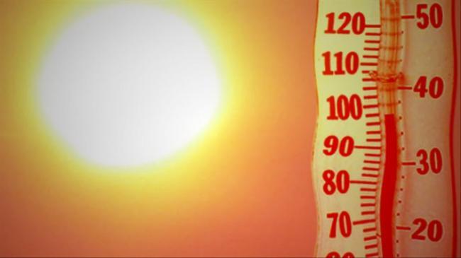 2019 стал самым жарким в истории Европы