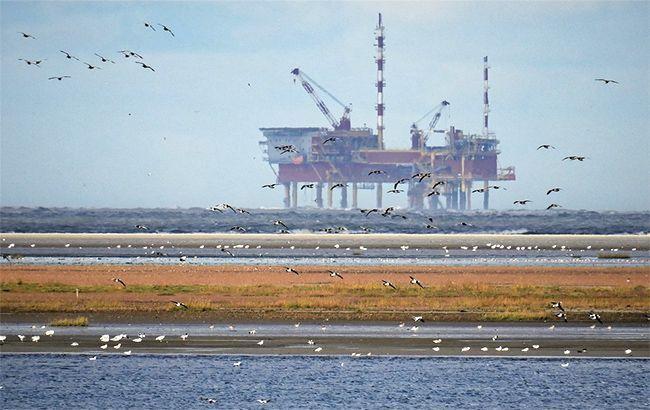 Цены на нефть рухнули еще почти на 10%
