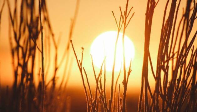 Этот год может стать самым жарким в истории - метеорологи