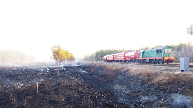 В МВД назвали версии возникновения лесных пожаров на севере Украины