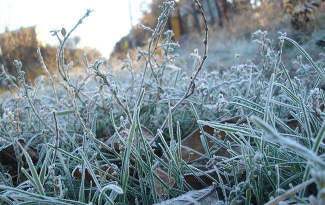 В Украине ударят заморозки: синоптик назвала области, где будет хуже всего
