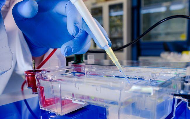 В Украине началось тестирование на антитела к коронавирусу