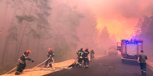 Полиция назвала три версии масштабного пожара на Луганщине