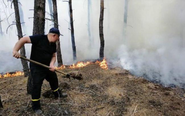Пожары в Луганской области признали ЧС регионального уровня