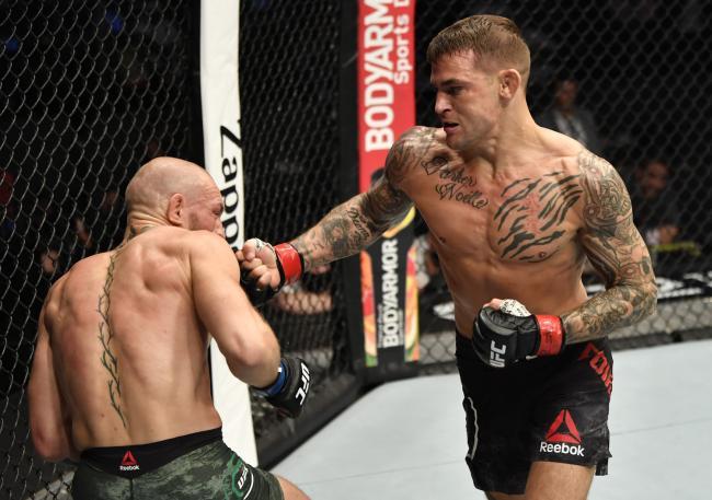Макгрегор продолжит карьеру после нокаута от Порье на турнире UFC 257