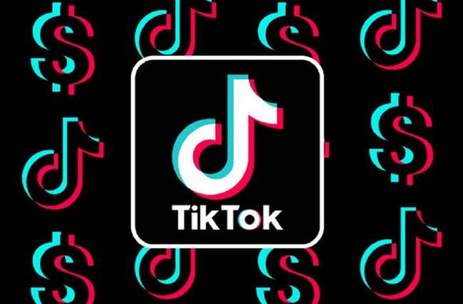 Зеленского просят запретить TikTok